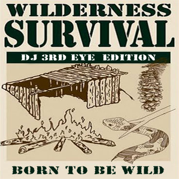 born-to-be-wild-cover-cd